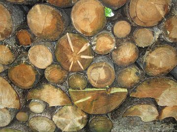 Holzschnitt van Georg Link