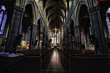 Basiliek van Samantha van Asperen