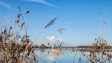 Rotterdam Skyline aan de Kralingse Plas van Mirjam Verbeek