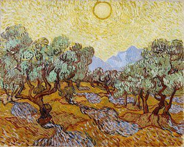 Olivenbäume mit gelbem Himmel und Sonne, Vincent van Gogh von 1000 Schilderijen