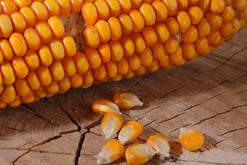 Maïs in de keuken van Rolf Pötsch