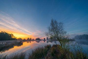 Die Sonne kündigt sich über einen See auf dem Dwingelderveld an von Coen Weesjes