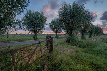 Skyline Maurik van Moetwil en van Dijk - Fotografie