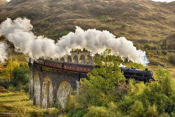 The Jacobite Steam Train - Passing Glenfinnan Viaduct von Rolf Schnepp