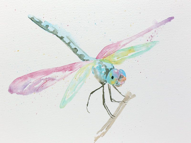 De Libelle van Natalie Bruns