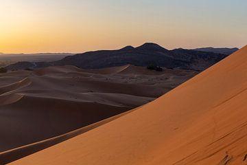 Woestijn zandduinen verlicht door prachtige warme ochtend licht. van Tjeerd Kruse