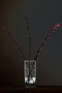 Dark Matter 3 - Stilleven met elzenproppen van Geert Smits