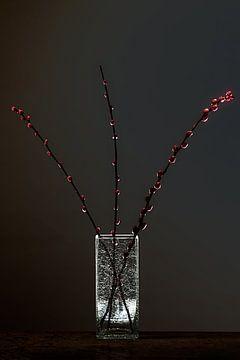 Dunkle Materie 3 - Stilleben mit Holzschuhen aus Erlenholz von Geert Smits