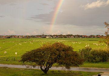 De regenboog van Nicole Nagtegaal