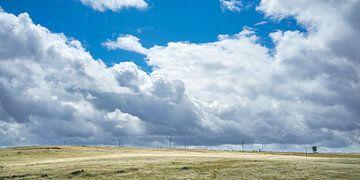 Steppe met regenwolken en zon van Fokko Erhart