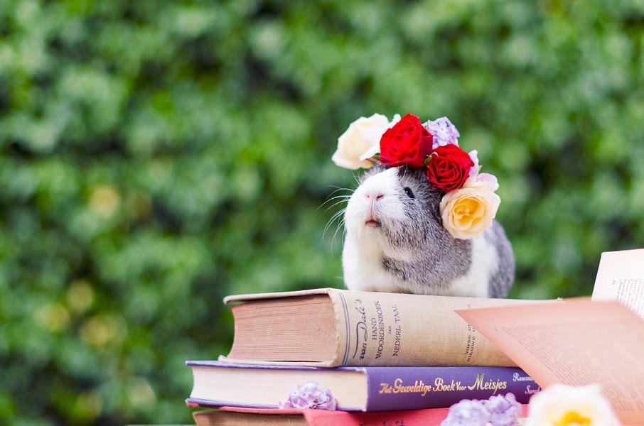 Flower piggy