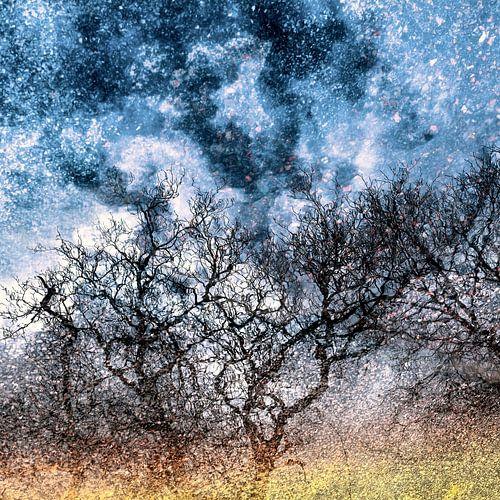 sterrenhemel in Schotland / 1 serie