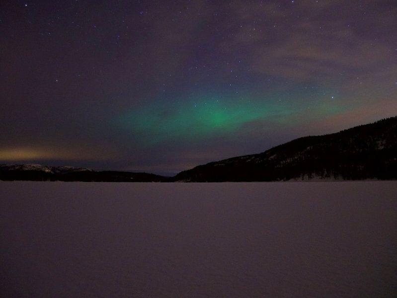 Noorderlicht in Zuid-Noorwegen van Surviking | Maurice van den Boogaard
