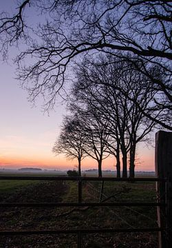 Bunter Sonnenuntergang von Manon Zandt