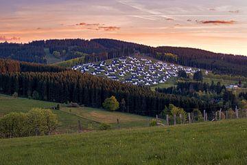 Ferienpark in Winterberg umgeben von Wäldern