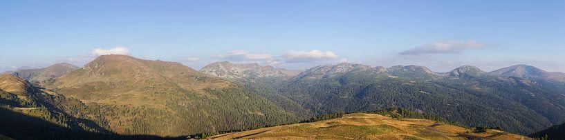 Bergpanorama over de Nockbergen van Coen Weesjes