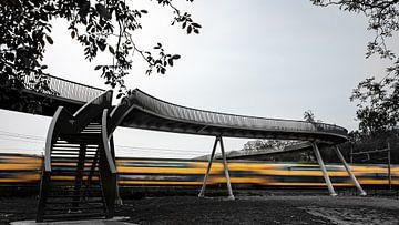 Spoorbrug Hoge Noten van Eddy Westdijk