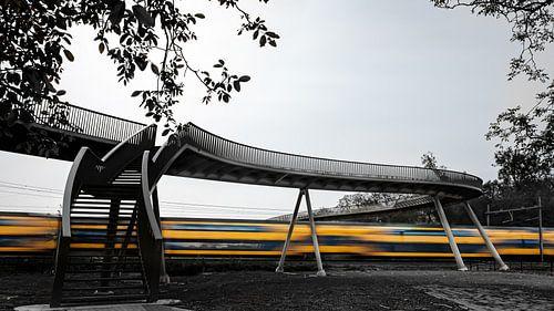 Pont ferroviaire Hoge Noten