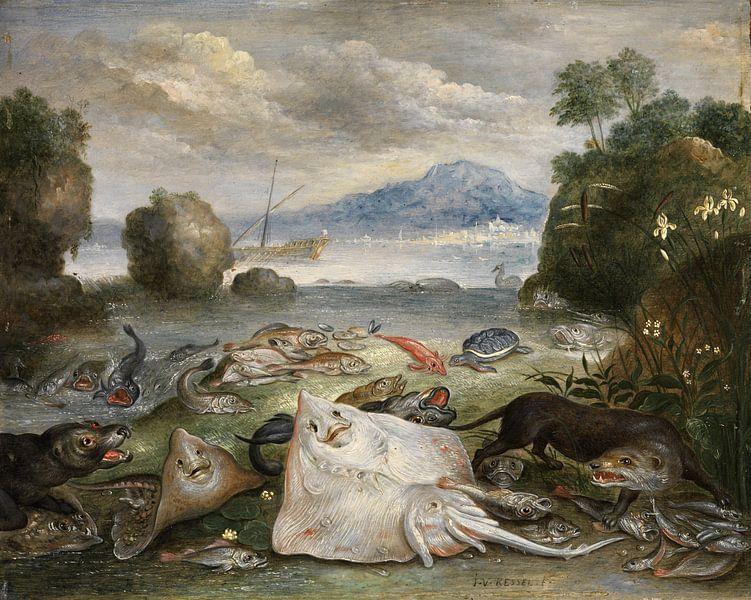 Meerestiere, Fische und Otter am Strand, Jan van Kessel von Meesterlijcke Meesters