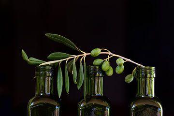 Auf drei leeren Flaschen liegen Olivenzweige von Ulrike Leone