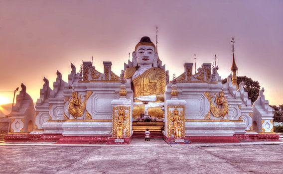 Birma van Nina Olivari
