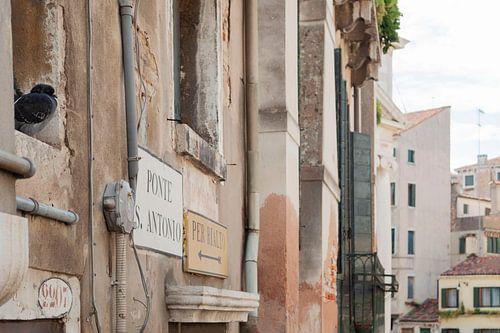 duif in Venetië