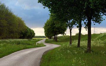 Groen von Wim Popken