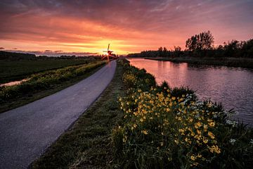 Windmolen bij zonsondergang van Eric van den Bandt