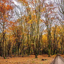 Herbst in Uddel von Hans Lebbe