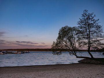 Het Müritzmeer in de avond in het Mecklenburgse merengebied van Animaflora PicsStock