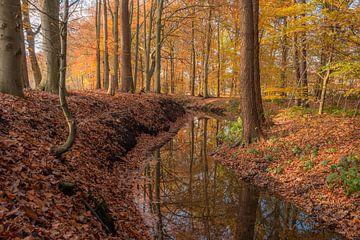 Ruisseau sinueux à la fin de l'été sur Eelke Brandsma