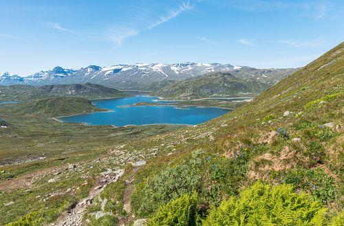 bitihorn natuurpark noorwegen