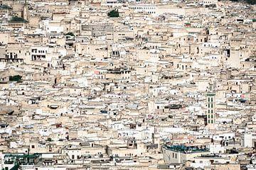De koningsstad Fes, Marokko van Rietje Bulthuis