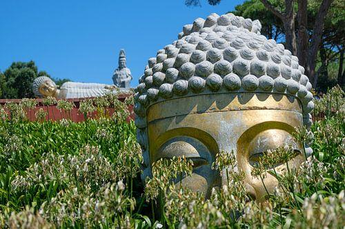 Buddha Eden park