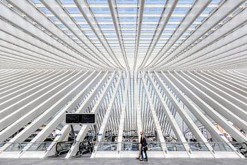 Station Luik-Guillemins von Roy Poots