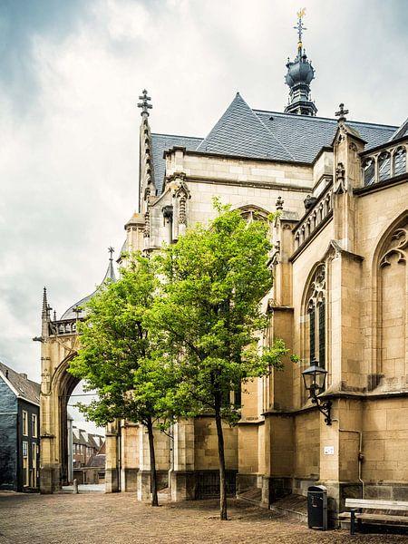 Entree st Stevenskerk van Lex Schulte