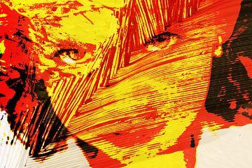 Het meisje met het rode haar von Alice Berkien-van Mil