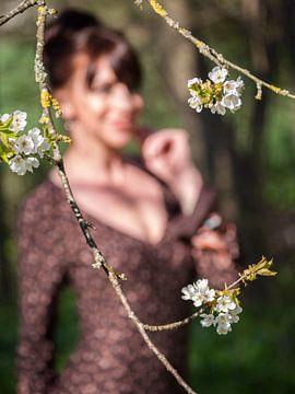 Blumen im Frühling von Mustafa Kurnaz