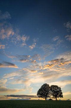 Brede hemel bij de heilige eiken van Jürgen Schmittdiel Photography