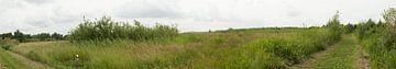 Panorama in de natuur van Gerard de Zwaan