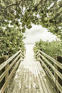 Brücke zum Strand | Vintage