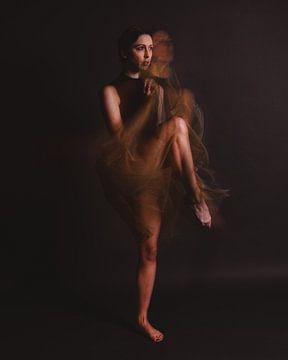 Ballerina in Bewegung 04 von FotoDennis.com