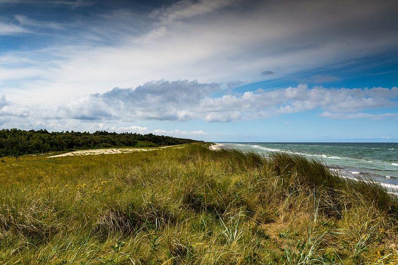 Ostseestrand, Oostzee-strand von Karin Luttmer