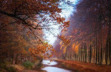 Herfstkleuren van Hilda van der Lee