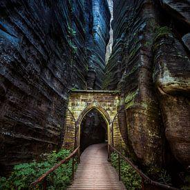 Een mysterieuze poort van Cynthia Hasenbos