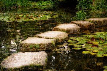 Steiniger Weg van Gabi Siebenhühner