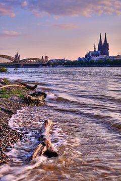 Stadsgezicht Keulse kathedraal aan de Rijn van 77pixels