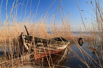 Boat in the reeds van Rico Ködder