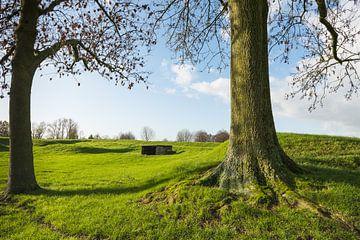 Festungswalles Woudrichem von Ruud Morijn