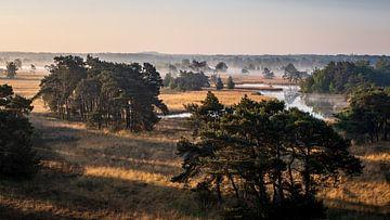 Jurassic Brabant van Marc Glaudemans